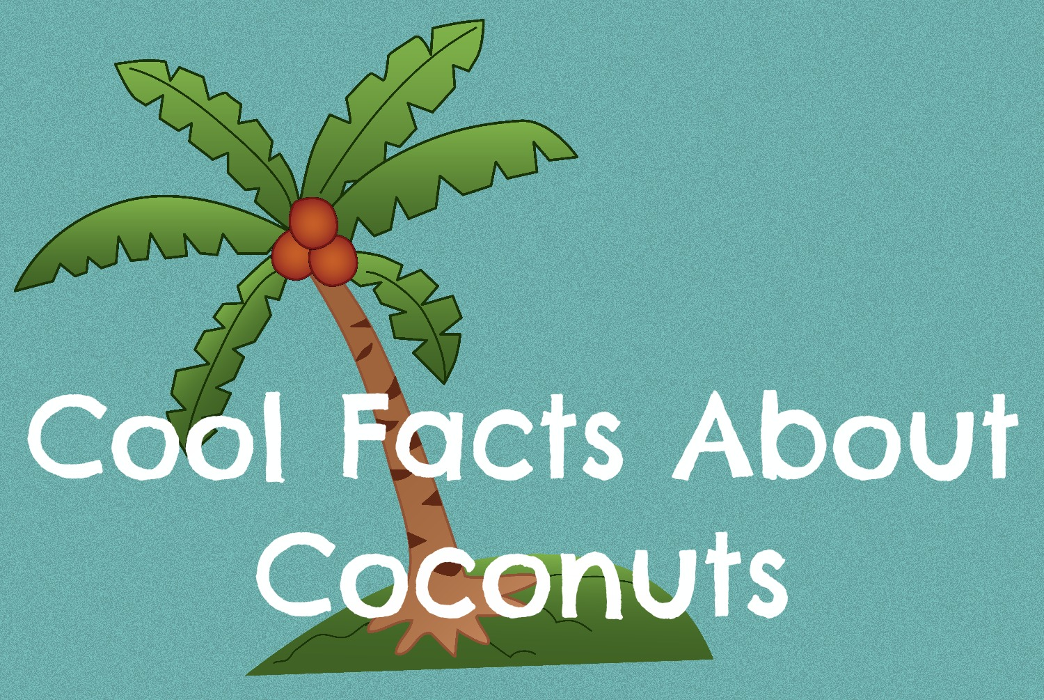 Cool Facts About Coconuts - Ponder Monster
