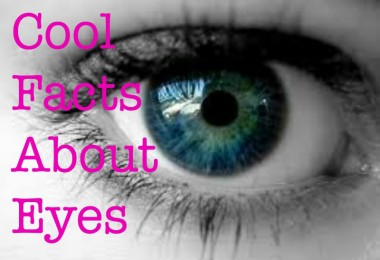 cool facts about eyes