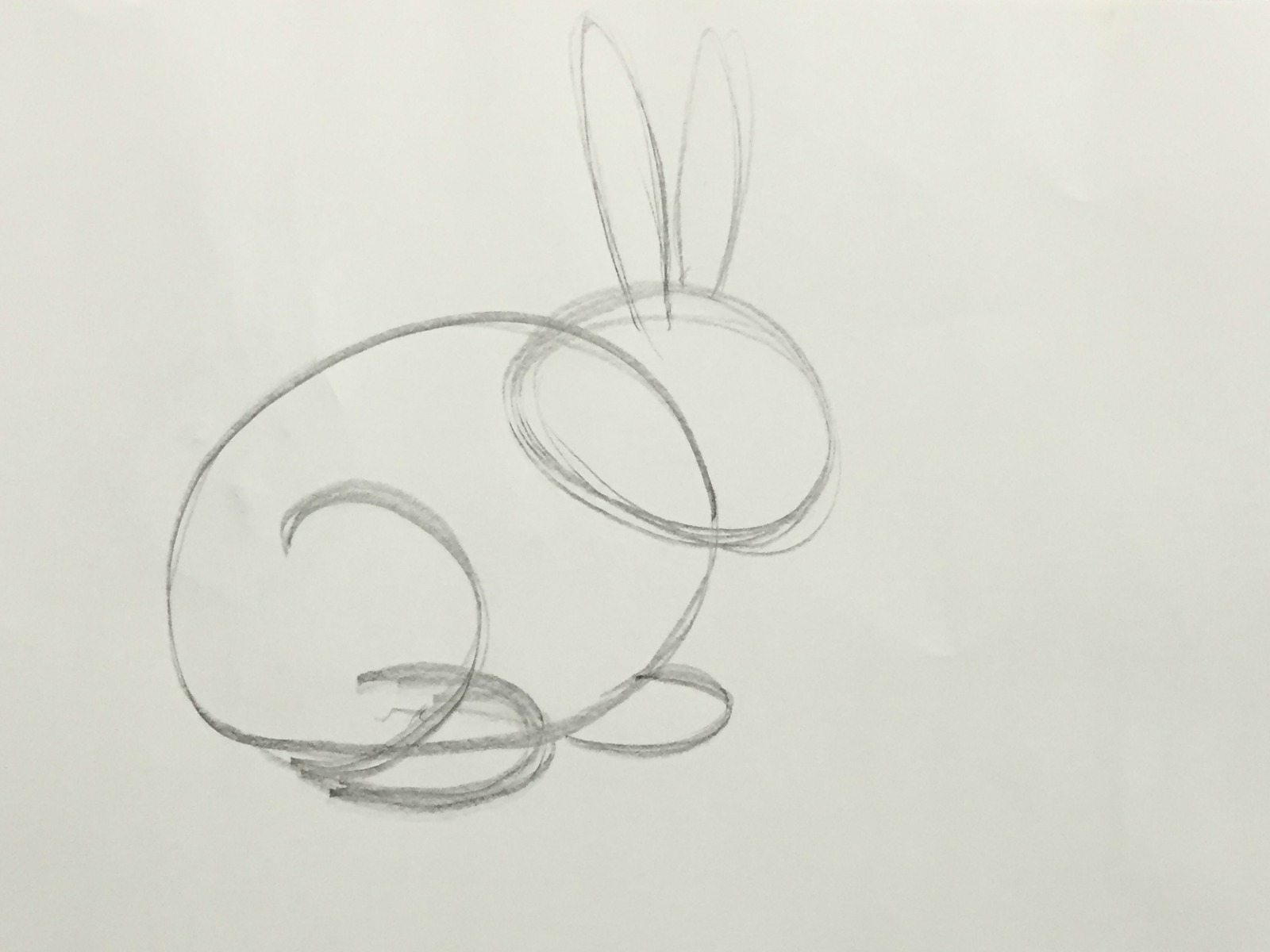 how to draw a bunny6