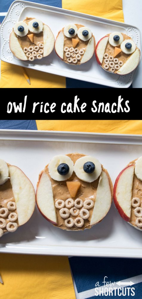 owl-rice-cake-snacks-476x1000